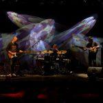 Oz Noy Trio (c) Peter Purgar